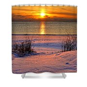 Path To Splendor  Cropped Shower Curtain