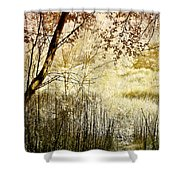 Path To The Meadow Shower Curtain