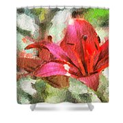 Patty's Perfect Lily Shower Curtain