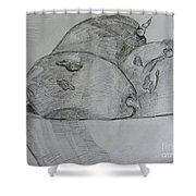 Paw-paw In Wooden Bowl Shower Curtain