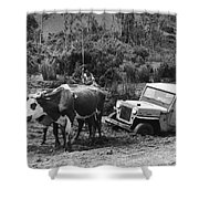 Peace Corps - Chile Shower Curtain