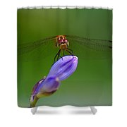 Peaceful Afternoon Shower Curtain