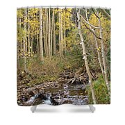 Peaceful Aspens Shower Curtain
