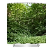 Peaceful Forest Shower Curtain