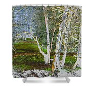 Peaceful Meadow Shower Curtain