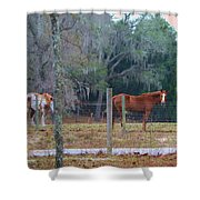 Peaceful Pasture Shower Curtain