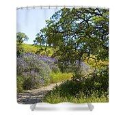 Peaceful Path Shower Curtain