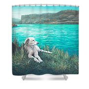 Peaceful Place At The Cove Palisades Shower Curtain