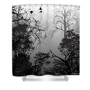 Peaceful Shades Of Gray Shower Curtain