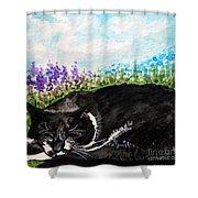 Peaceful Slumber Shower Curtain