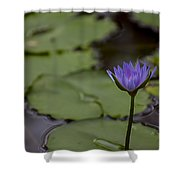 Peaceful Waterlily Shower Curtain