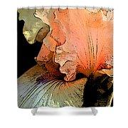 Peach Iris Digital Art Shower Curtain
