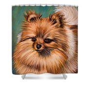 Peaches And Cream Shower Curtain by Michelle Wrighton