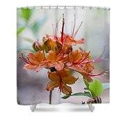 Peachy Alabama Azalea Shower Curtain