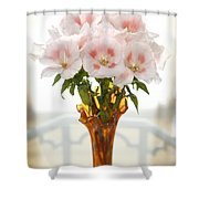 Peachy Gladiolas Shower Curtain