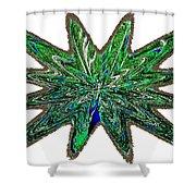 Peacock Burst Shower Curtain