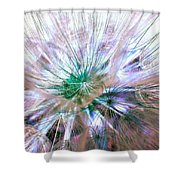 Peacock Dandelion - Macro Photography Shower Curtain