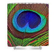 Peacock Feather Close Up Shower Curtain by Garry Gay