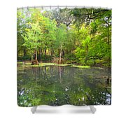 Peacock Springs State Park Shower Curtain