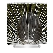 Peacock Tail Graphic Shower Curtain