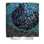 Peacock With Bling Shower Curtain