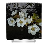 Pear Blooms Shower Curtain