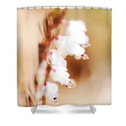 Pearls In The Wind Shower Curtain