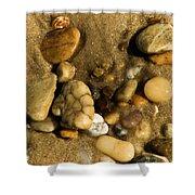 Pebbles Shower Curtain