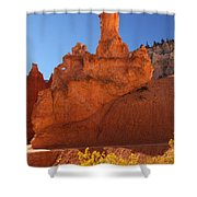 Peek A Boo Trail 2 Shower Curtain