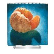 Peeled Shower Curtain by Joe Winkler