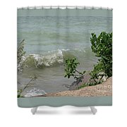 Pelee Shore Shower Curtain