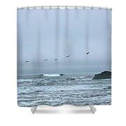 Pelican 2 Oregon Coast Shower Curtain