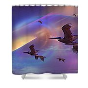 Pelican Do Shower Curtain