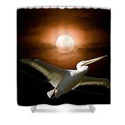 Pelican Moon Shower Curtain