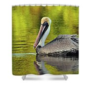 Pelican On A Golden Pond Shower Curtain