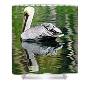 Pelican Reflecting Shower Curtain