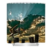 Pelican Sky Shower Curtain by Meirion Matthias