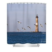 Pelicans And Morris Island Light 2 Shower Curtain