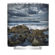 Pelicans Over The Surf On Coronado Shower Curtain