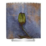 Penchant Naturel - 07at04b3 Shower Curtain by Variance Collections