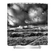 Penyfan Pond Mono Shower Curtain