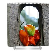 Peppered Fence Shower Curtain