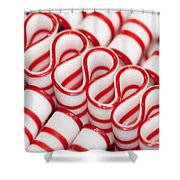 Peppermint Ribbon Candy Shower Curtain