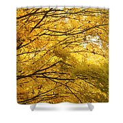 Perfect Autumn Shower Curtain