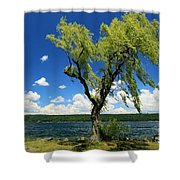 Perfect Picnic Spot Shower Curtain