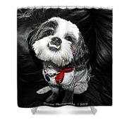 Perfect Subject  Shower Curtain