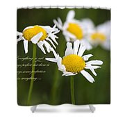 Perfection In The World Shower Curtain
