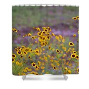 Perky Golden Coreopsis Wildflowers Shower Curtain