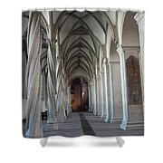 Perpendicular Cross Vault Shower Curtain