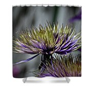 Petal Freedom Shower Curtain
